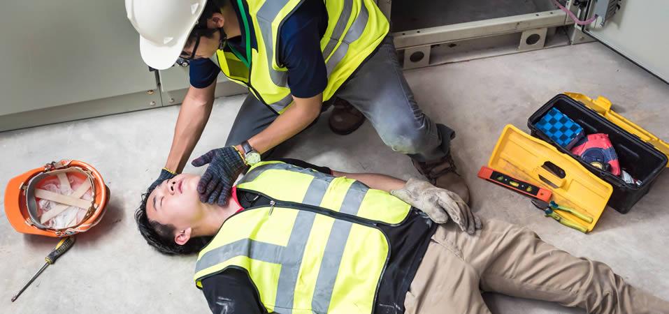 Lantra Emergency First Aid at Work +F ROI